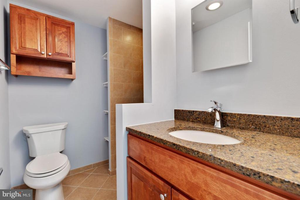 Master bath - 11064 SAFFOLD WAY, RESTON