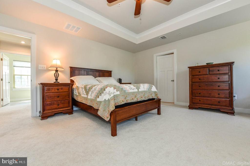 Master bedroom. - 9687 AMELIA CT, NEW MARKET
