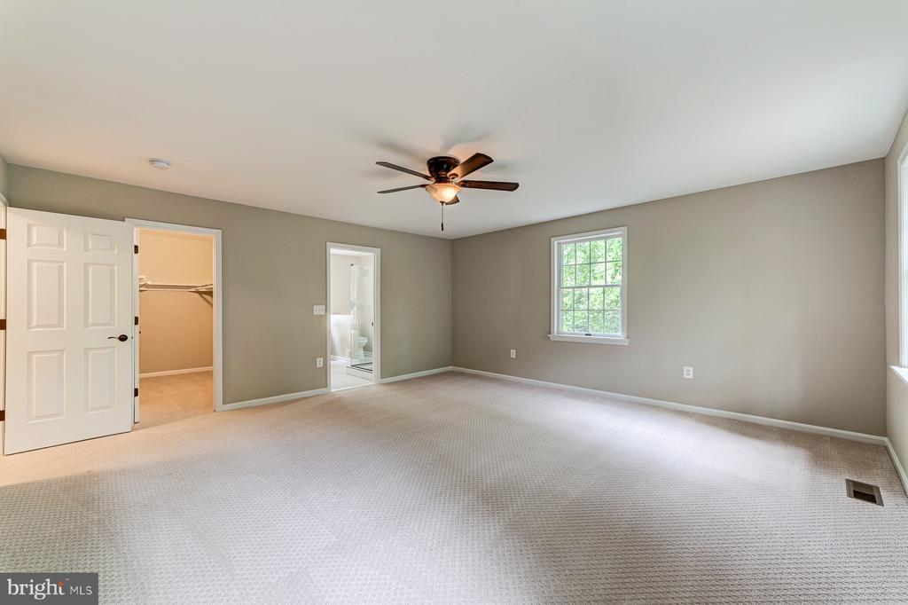 Master bedroom w/walk in closet & ensuite - 5696 GAINES ST, BURKE
