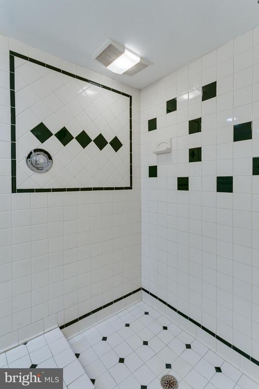 Full Bath/Shower Area - Lower Level - 5125 37TH ST N, ARLINGTON