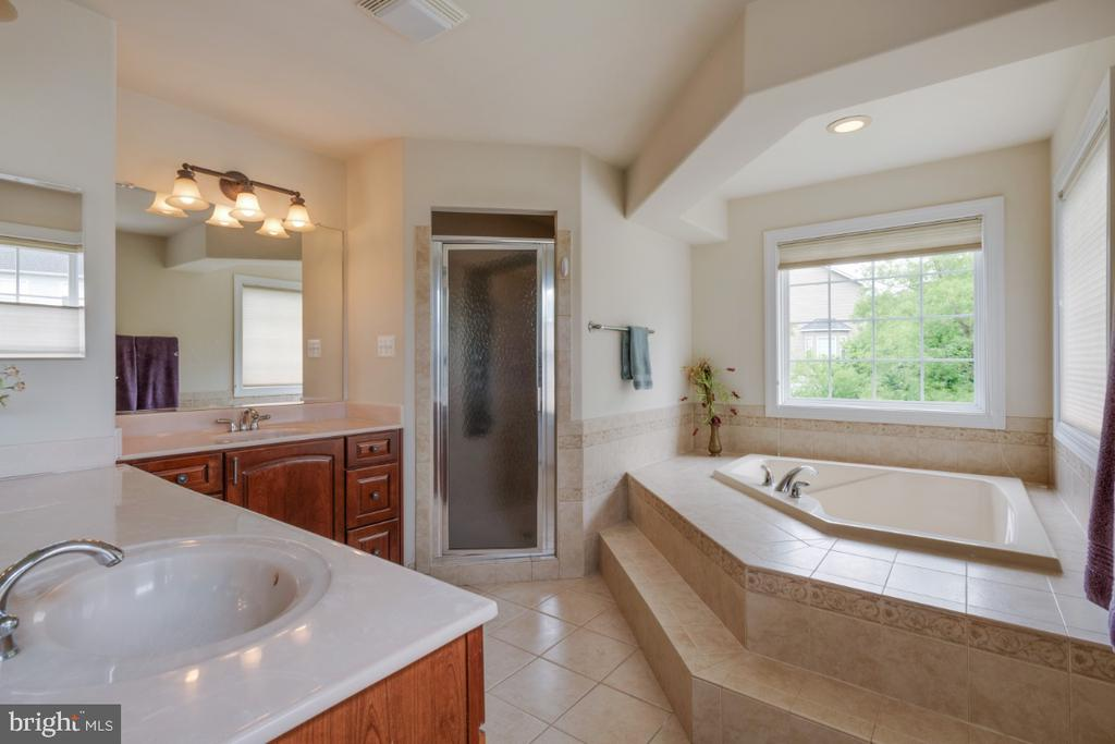 Luxury master bath soaking tub and shower - 4 EASTER DR, STAFFORD