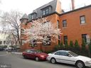 Cherry Tree out Front - 1667 MONROE ST NW, WASHINGTON