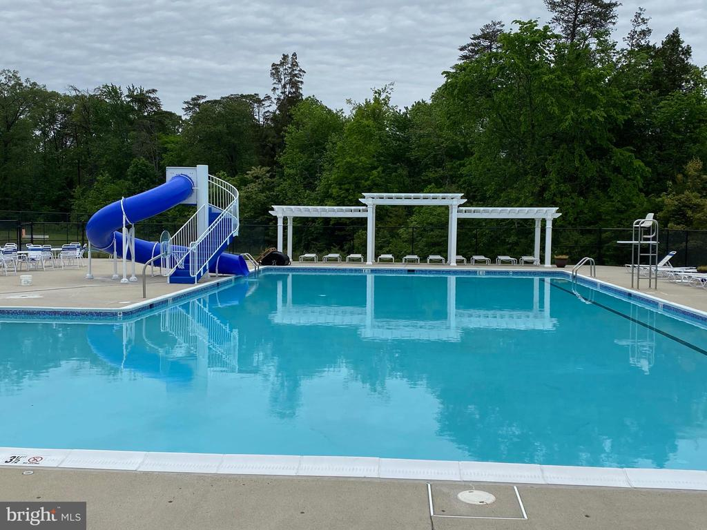Huge pool, new slide, and shoot hoops as well! - 25543 THORNBURG CT, CHANTILLY