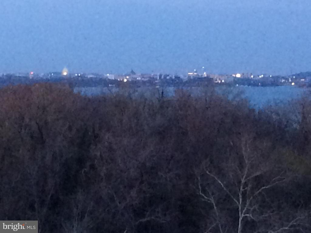 Evening view of DC Capitol - 501 SLATERS LN #703, ALEXANDRIA