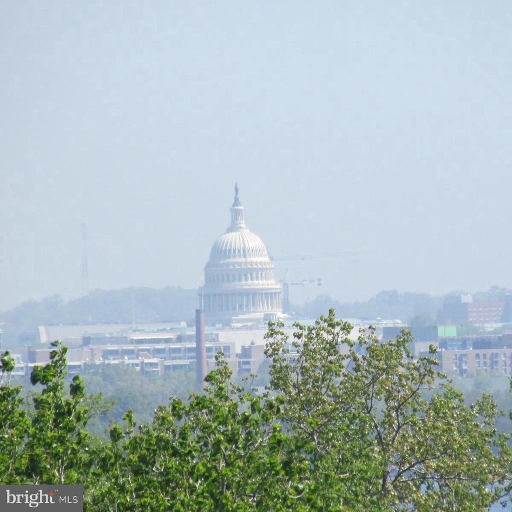 View from Unit of Capitol - 501 SLATERS LN #703, ALEXANDRIA