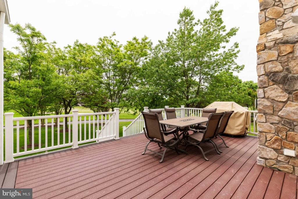 Spacious Deck off the Kitchen - 19912 MIZNER TER, ASHBURN