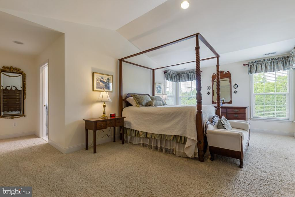 Wonderful Master Suite with 2 Walk-in Closets - 19912 MIZNER TER, ASHBURN