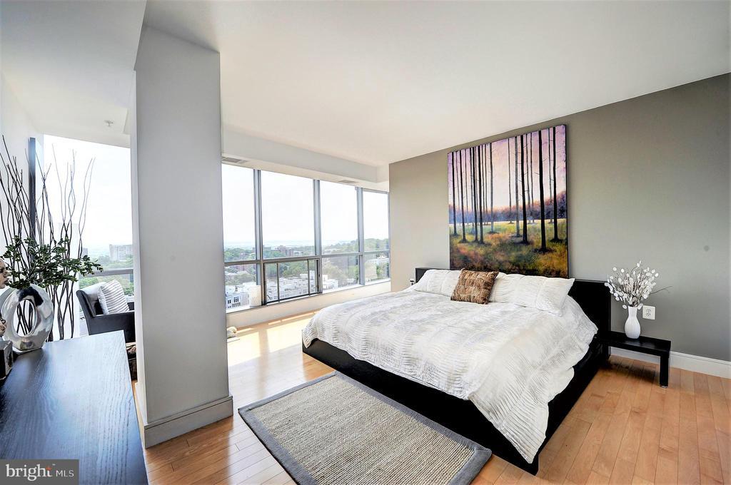 Large Master Bedroom Suite - 2001 15TH ST N #1004, ARLINGTON