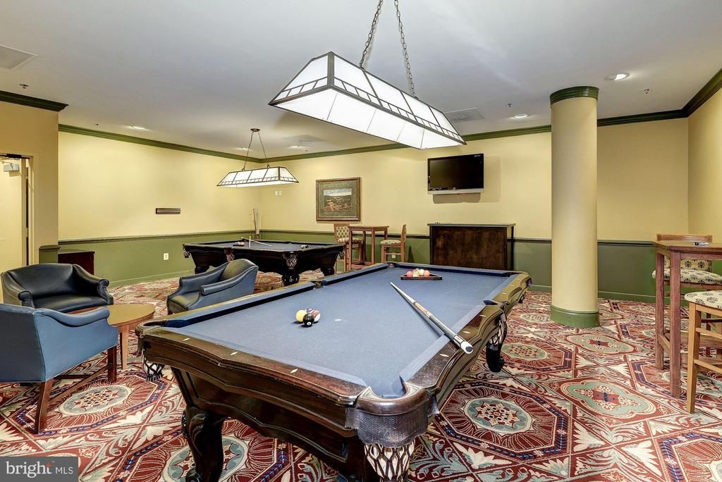 BILLARDS ROOM - 19385 CYPRESS RIDGE TER #307, LEESBURG