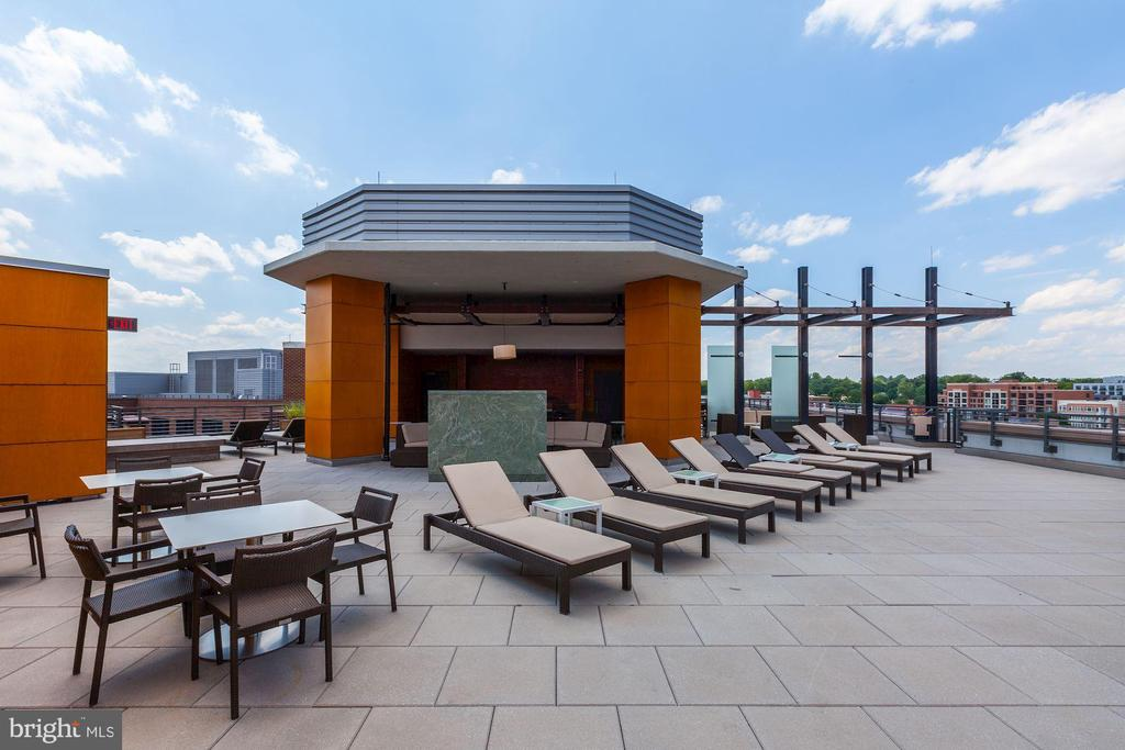 Rooftop Access - 7171 WOODMONT AVE #507, BETHESDA