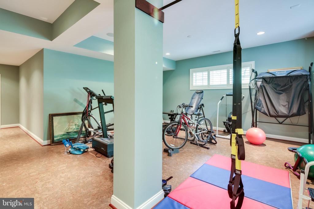 Fitness room - 809 HOMESTEAD LN, CROWNSVILLE