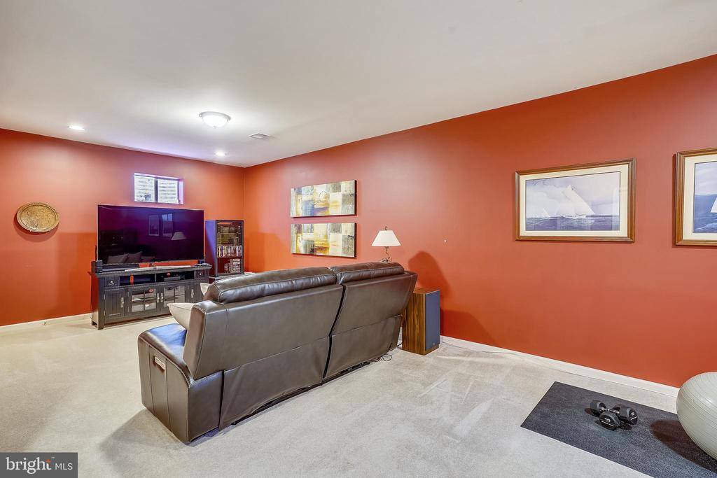 Lower level recreation room - 206 WATKINS CIR, ROCKVILLE