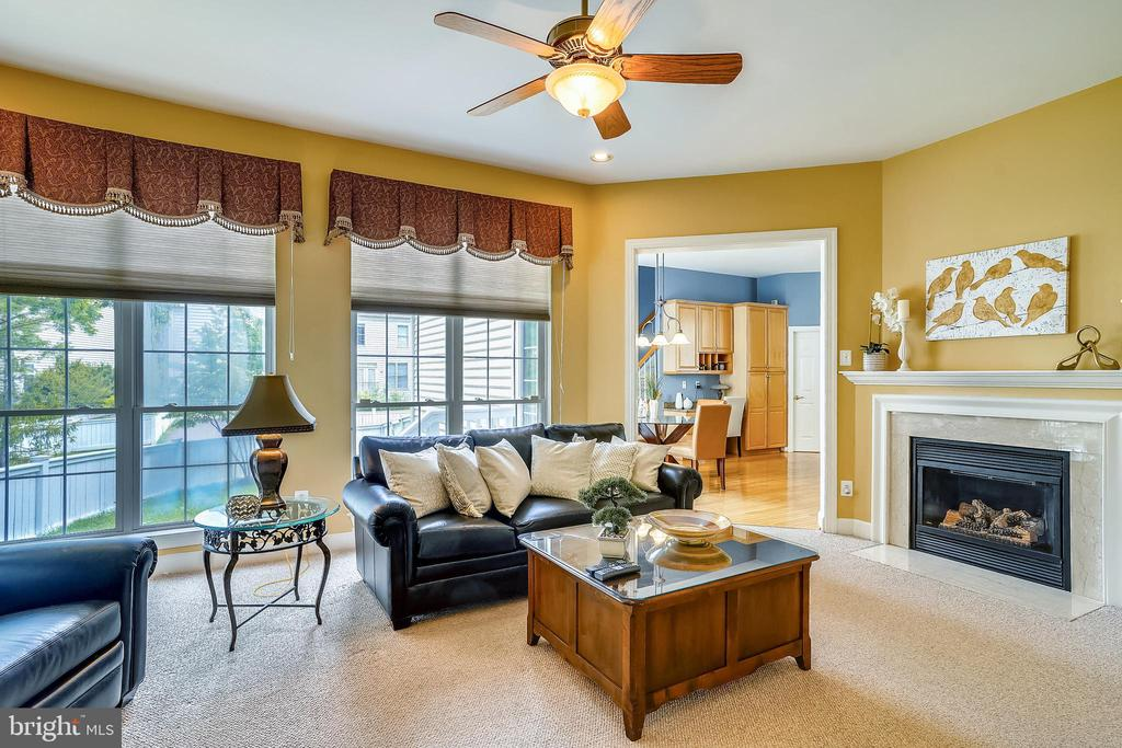 Family room with gas fireplace - 206 WATKINS CIR, ROCKVILLE