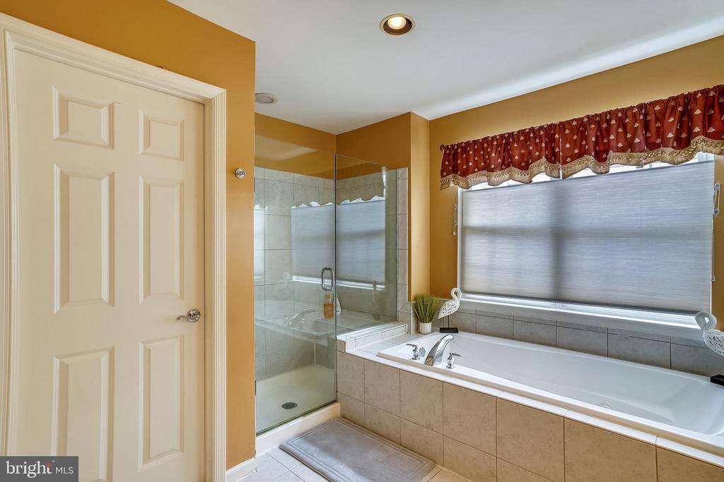 Master bath  walk-in shower and frameless glass - 206 WATKINS CIR, ROCKVILLE