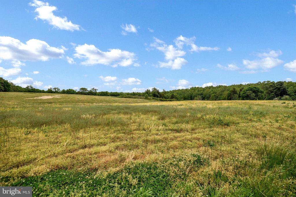 Another view of farm land - 16253 MARQUIS RD, ORANGE