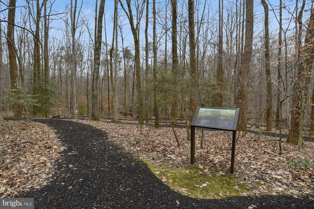 Trail Head at Prince William Forest Park - 16209 TACONIC CIR, DUMFRIES