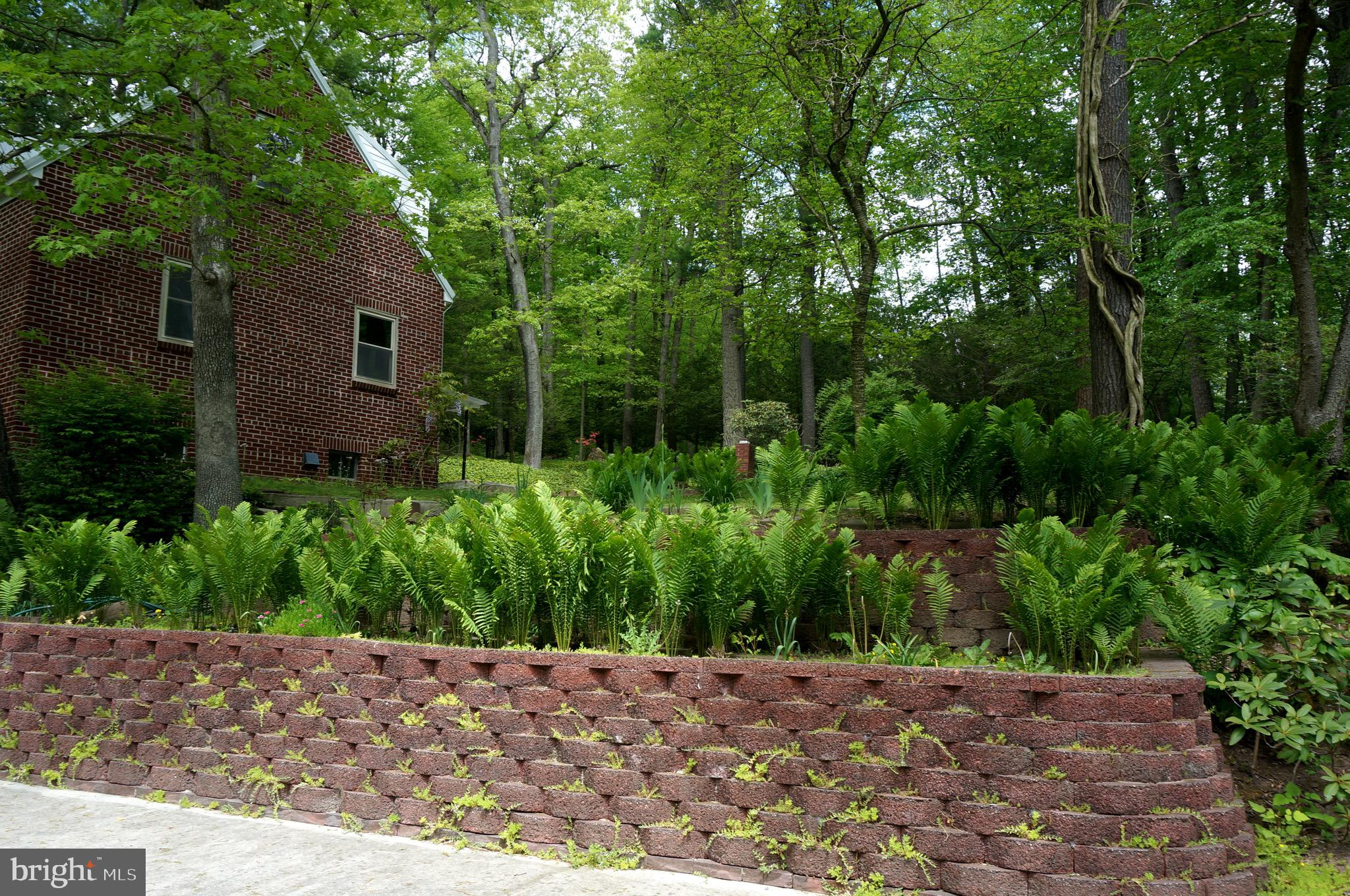 Paver Terraced Plantings