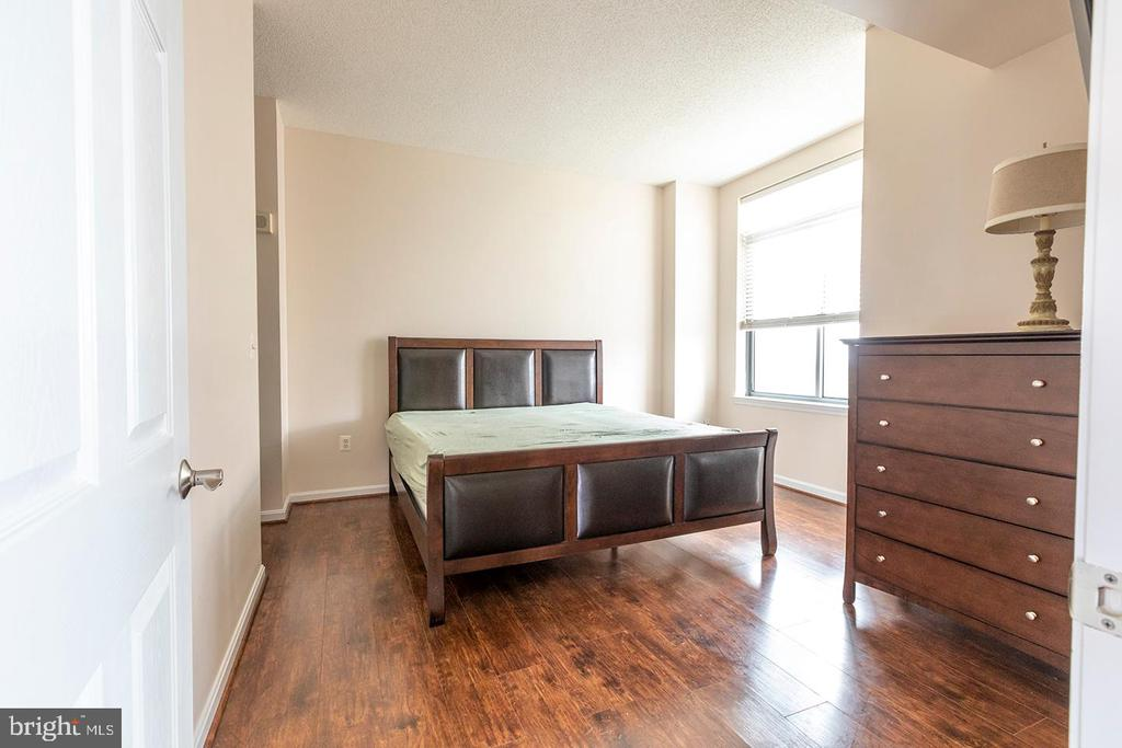 Master Bedroom - 11710 OLD GEORGETOWN ROAD #1521, NORTH BETHESDA