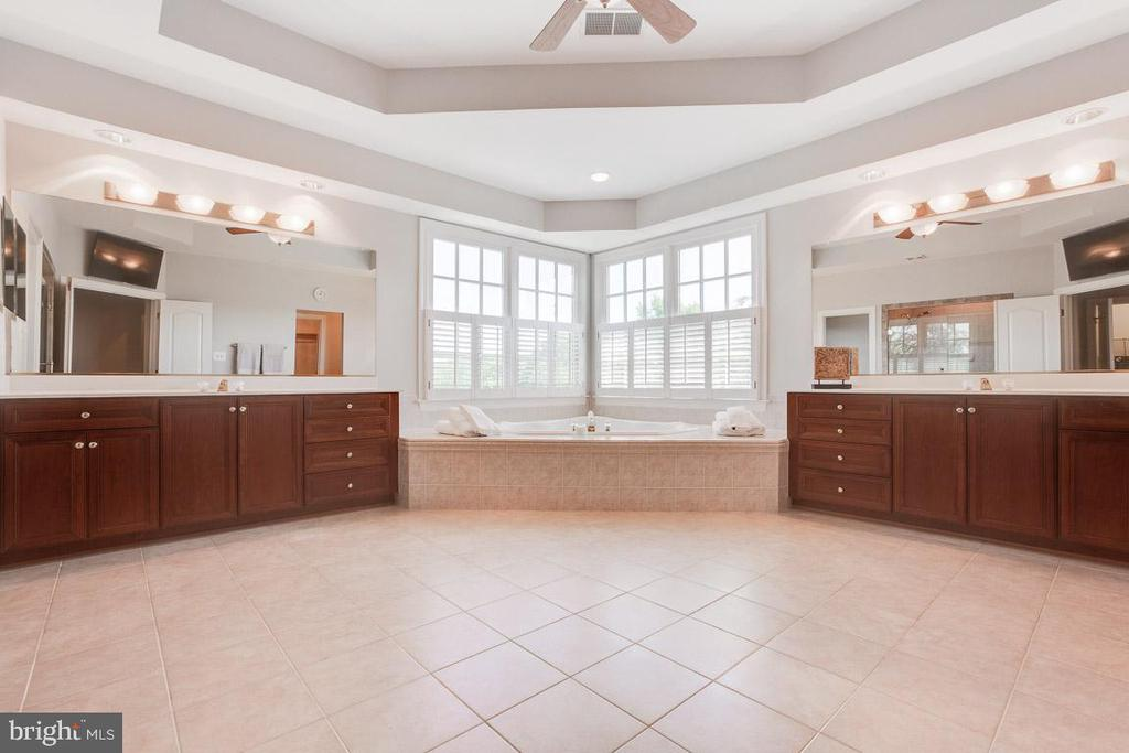 Luxury master bathroom - 17072 SILVER CHARM PL, LEESBURG