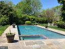 Sparkling spa and pool - 38025 JOHN MOSBY HWY, MIDDLEBURG
