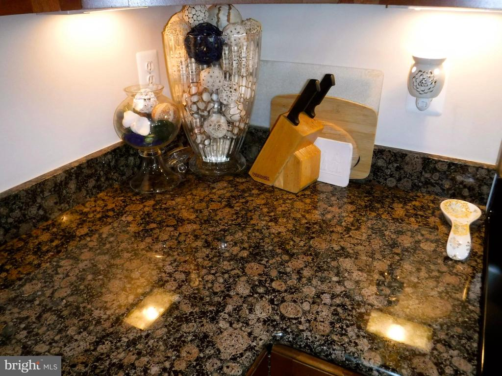 Granite countertops - 15839 JOHN DISKIN CIR #72, WOODBRIDGE