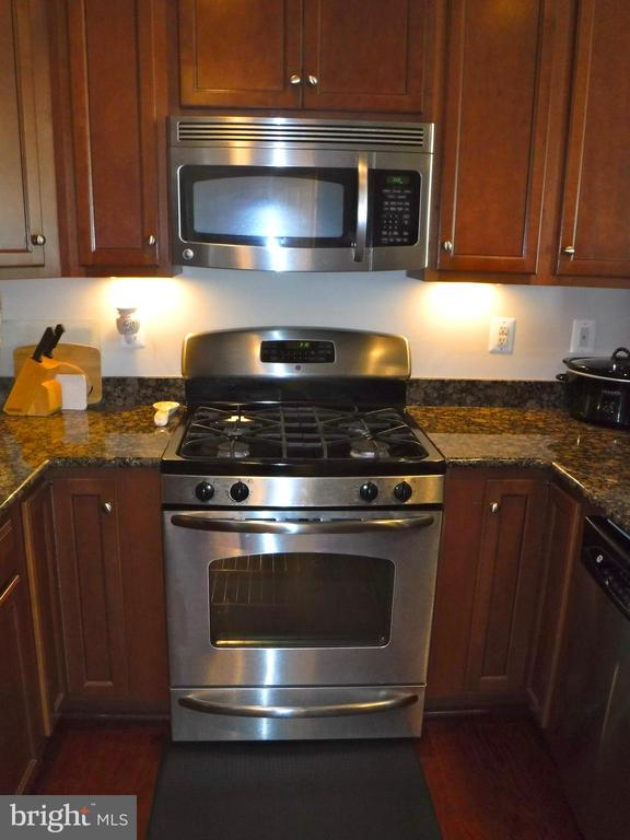 Gas range - 15839 JOHN DISKIN CIR #72, WOODBRIDGE