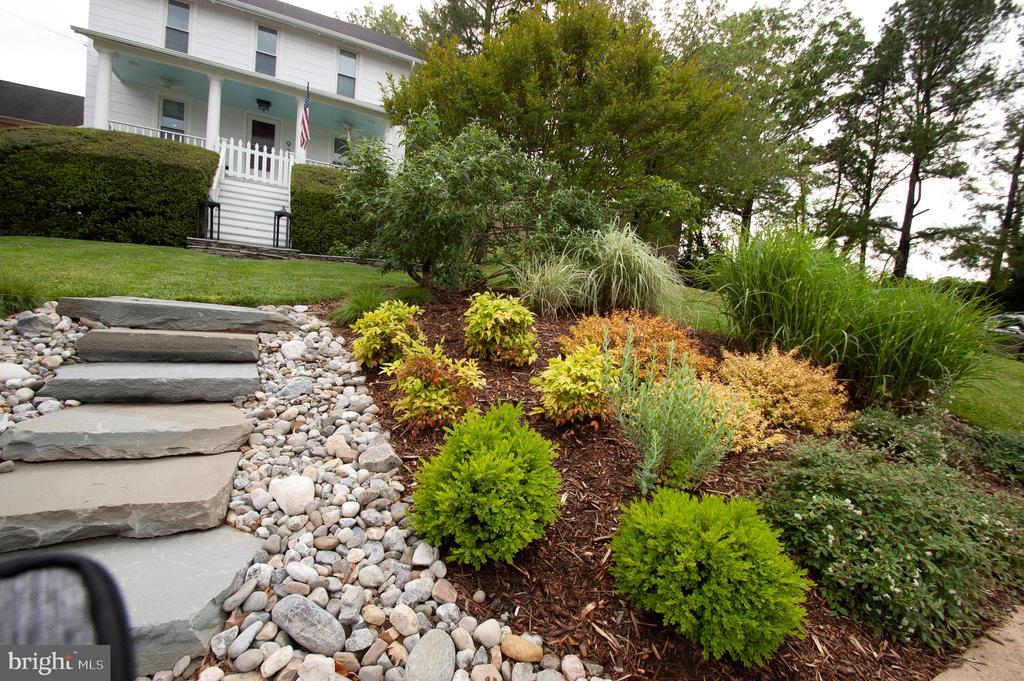 So many wonderful details - landscaping perfection - 900 N FREDERICK ST, ARLINGTON