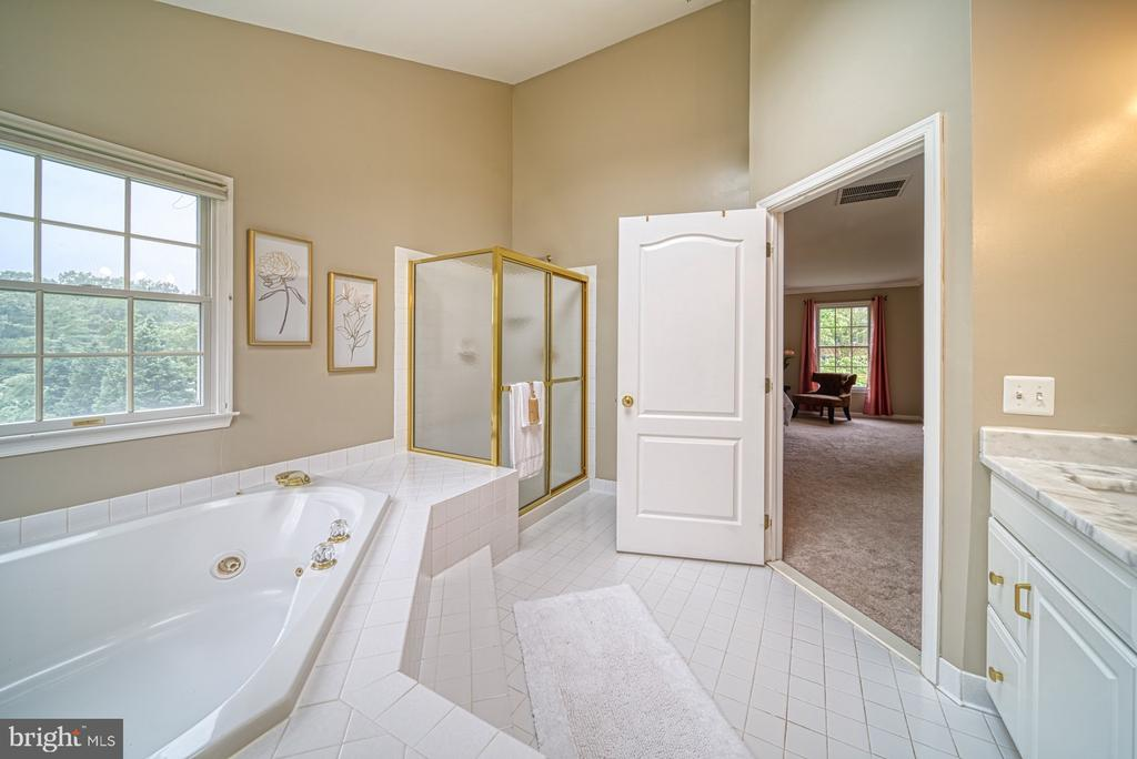 Jacuzzi Tub and Glass Enclosed Shower - 1321 GATESMEADOW WAY, RESTON