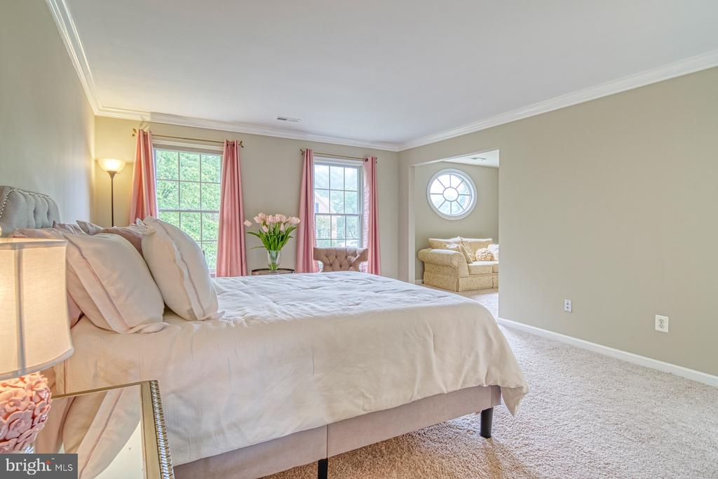Master Suite - 1321 GATESMEADOW WAY, RESTON