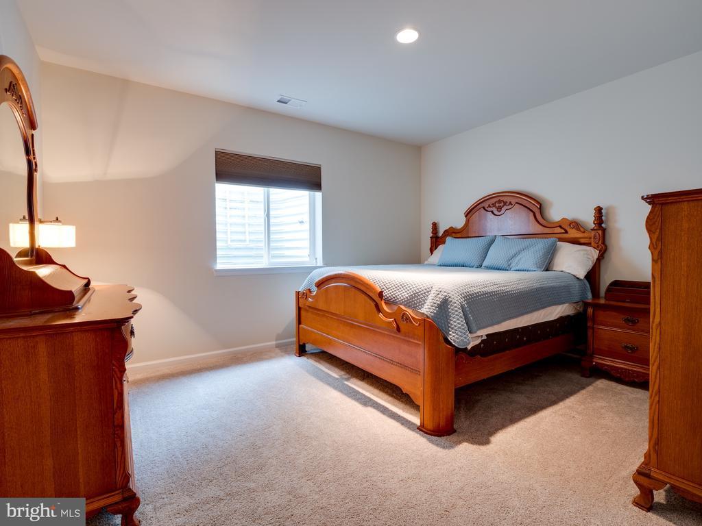 Lower Level Bedroom #6 w/Bth fits king sz bed - 42610 CALLALILY WAY, BRAMBLETON