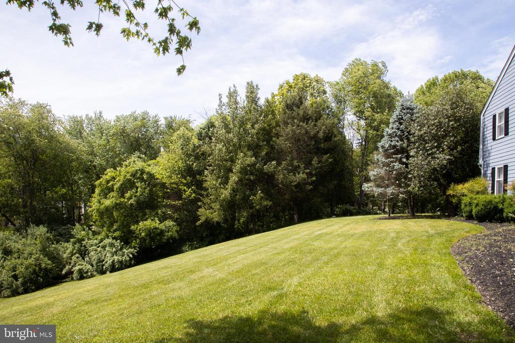 3 acres - 10106 WINDY KNOLL LN, VIENNA
