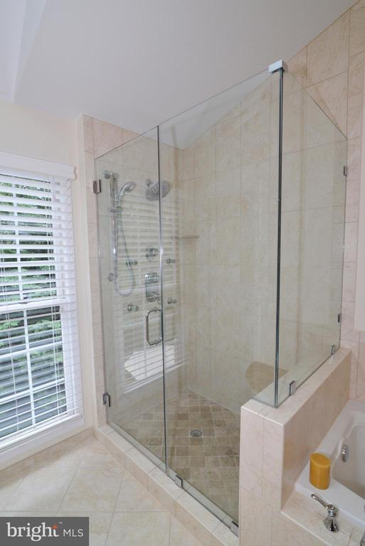 Master shower - 20407 ROSEMALLOW CT, POTOMAC FALLS