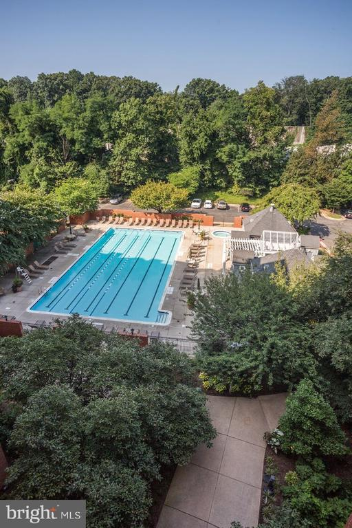 Amazing lap pool! - 2230 GEORGE C MARSHALL DR #827, FALLS CHURCH