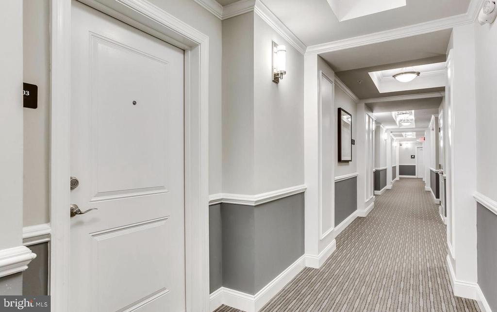 Hallway to the Apartment - 21025 ROCKY KNOLL SQ #203, ASHBURN