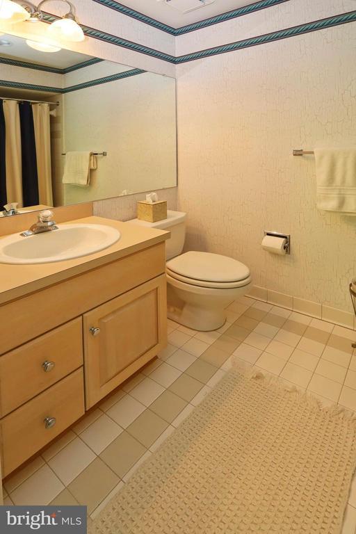 A separate bathroom for the princess - 11331 BRIGHT POND LN, RESTON