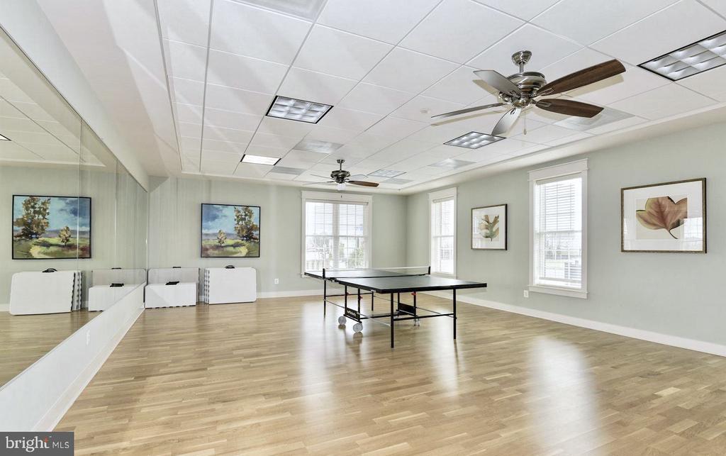 Community Club House Ping-Pong - 21025 ROCKY KNOLL SQ #203, ASHBURN