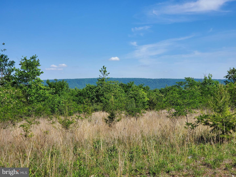 Terrain pour l Vente à Glengary, Virginie-Occidentale 25421 États-Unis