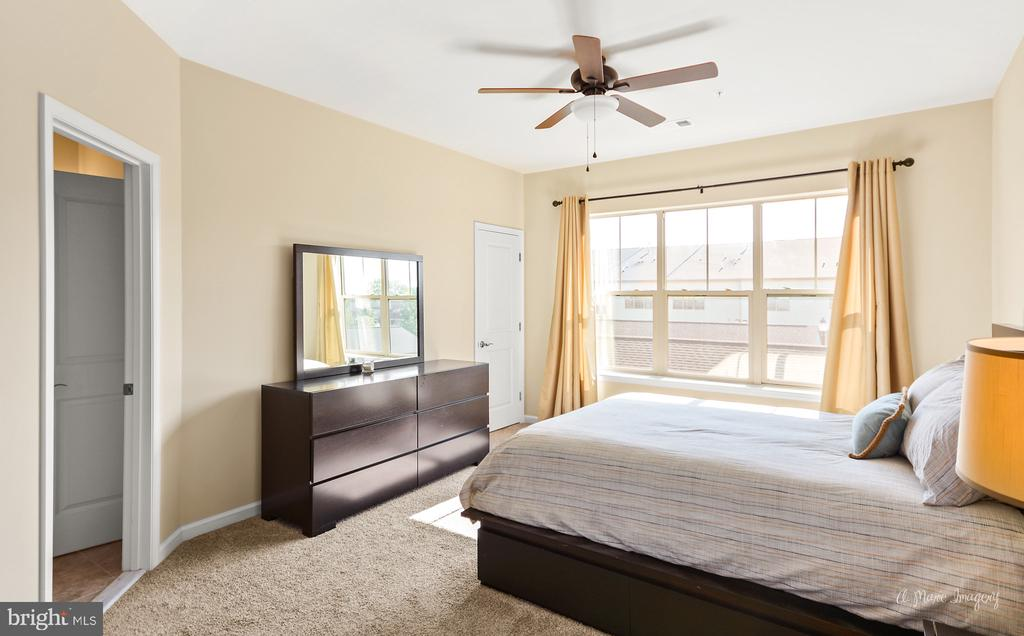 Large master suite with huge, sunny windows - 3029 STONERS FORD WAY, FREDERICK