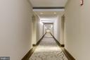Well lit and updated hallways. - 2230 GEORGE C MARSHALL DR #827, FALLS CHURCH