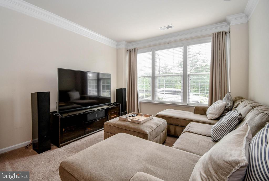 Living room - 19410 FRONT ST, LEESBURG
