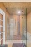 Master Bathroom Shower & Sauna - 3722 HIGHLAND PL, FAIRFAX