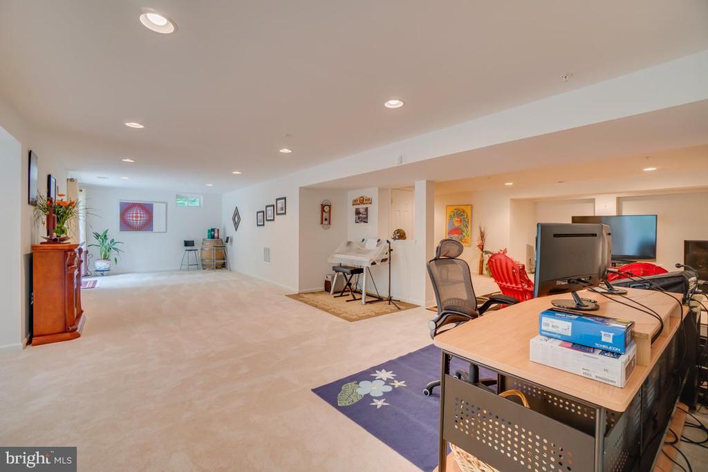 huge finished basement - 147 SANFORD FERRY CT, FREDERICKSBURG
