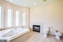 Master bath tub, bidet, and fireplace - 9649 LOGAN HEIGHTS CIR, SPOTSYLVANIA