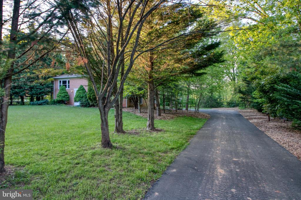 Arrive home at your tree-lined driveway. - 19355 YOUNGS CLIFF RD, STERLING