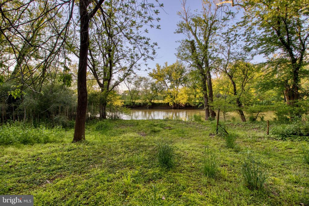 The Potomac River is in your backyard! - 19355 YOUNGS CLIFF RD, STERLING
