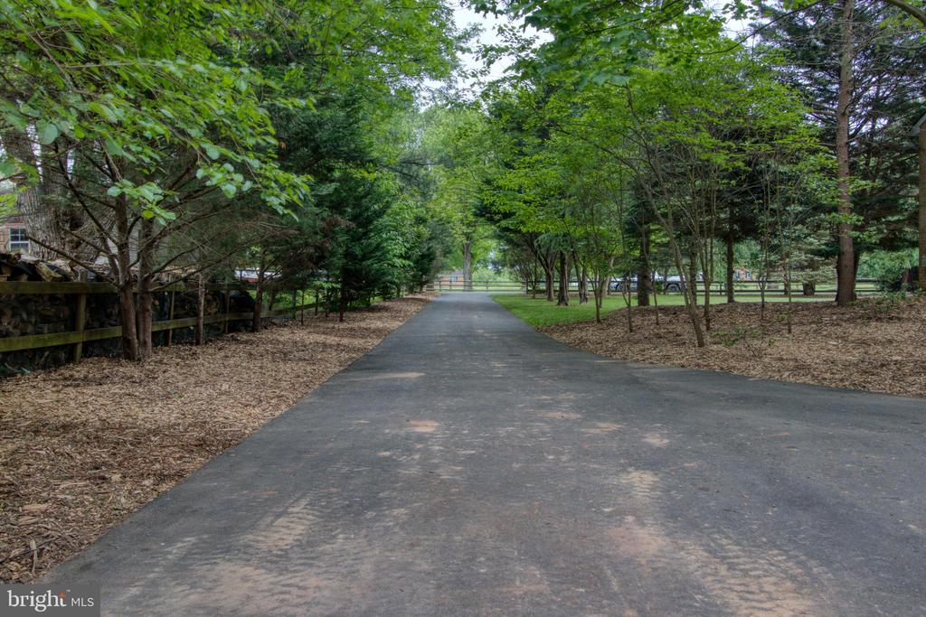 Long, private tree-lined driveway! - 19355 YOUNGS CLIFF RD, STERLING