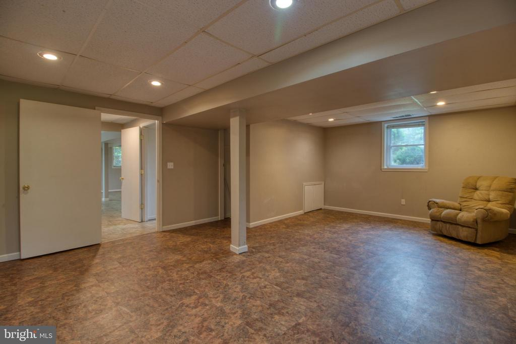 HUGE lower level bedroom! - 19355 YOUNGS CLIFF RD, STERLING