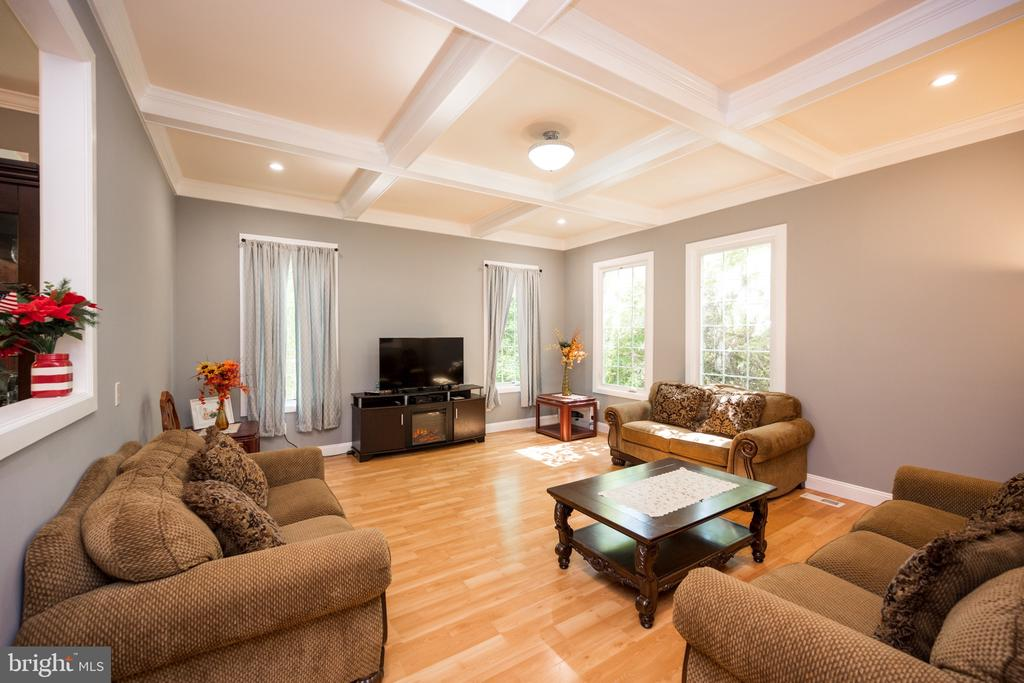 Family Room - 6100 MUNSON HILL RD, FALLS CHURCH