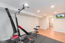 Exercise Room/Basement - 401 KOJUN CT, STERLING