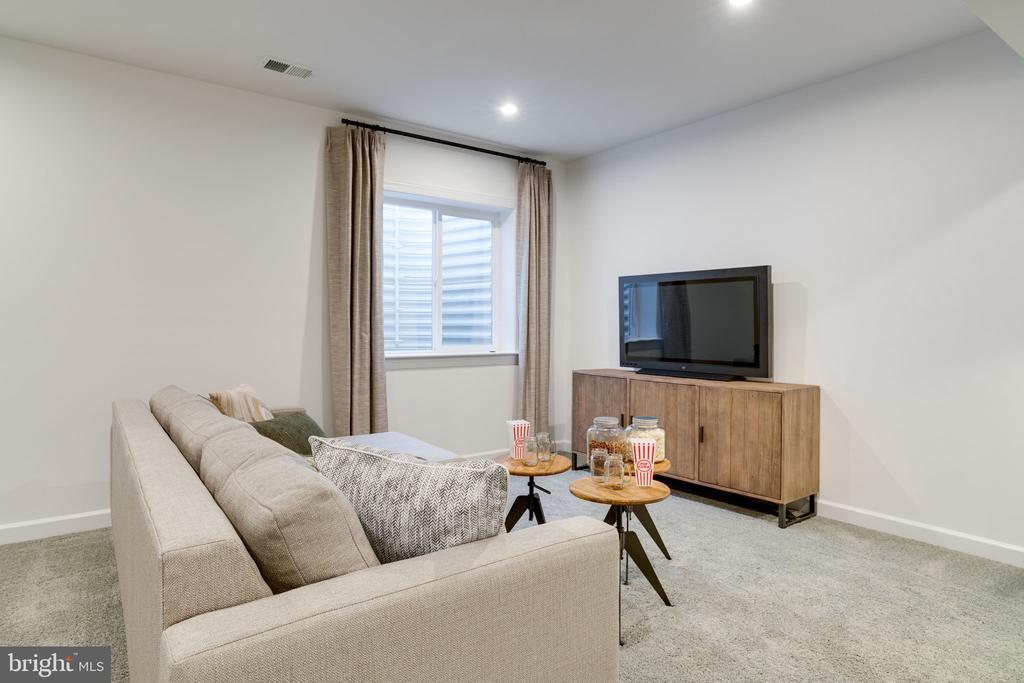 Lower Level bedroom/den - 104 PENDER CT, FREDERICKSBURG